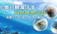 [獨家]澎湖夢幻月鯉灣海底樂園三日遊 人氣排行★★★★★