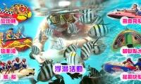 夏艷海豚灣三日~銷售冠軍[推] 人氣排行★★★★★★